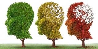 Septembrie, luna mondiala a sindromului Alzheimer
