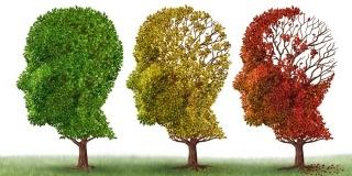 Cele 7 stadii ale bolii Alzheimer, in scala Reisberg: Agravarea pas cu pas